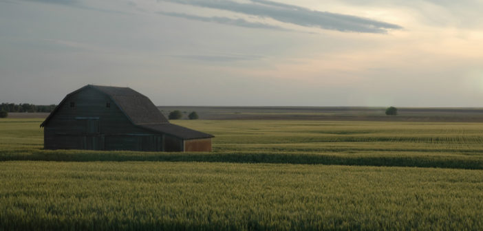 Large Land Management Needs Heavy Equipment | Mascus Blog USA